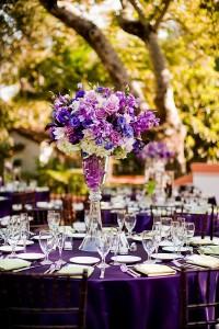 purple table2